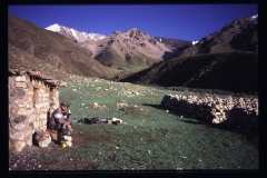 Tibet-63